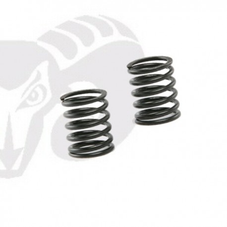 Front Shock Black Springs