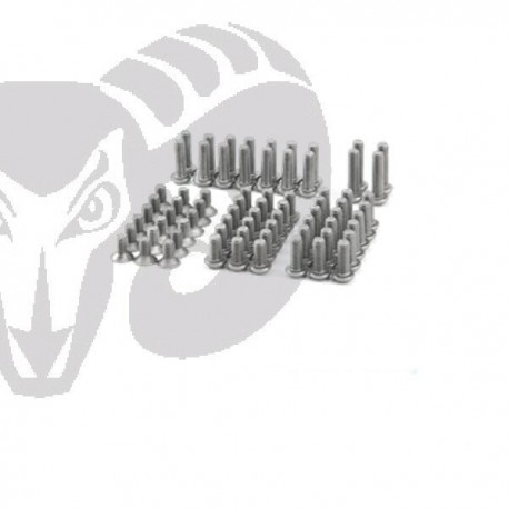 "Velox V10 ""PRO"" Titanium Screw Set"