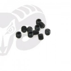 Allen Set Screws M4x4