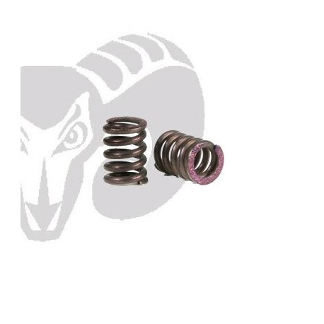 Velox V10 2 Speed Springs