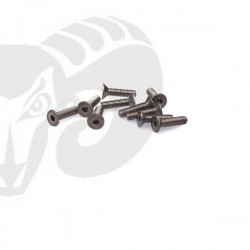"Flat Head Screws M3x12 ""Titanium"""