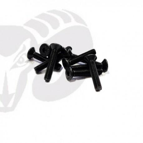 Flat Head Screws M3x14