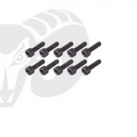Socket Head Screws M2.5x10